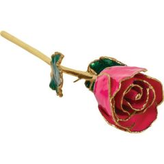 Frank Jewelers Lacquered Magenta Rose with Gold Trim
