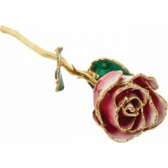 Frank Jewelers Lacquered Frozen White & Red Rose with Gold Trim